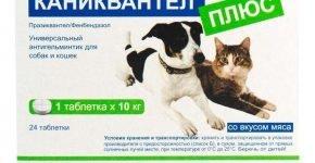 Таблетки от глистов для кошек и собак Каниквантел