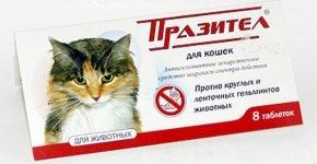 Препарат Празител для кошек