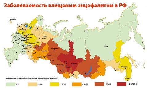 Карта заболеваемости энцефалитом на территории РФ
