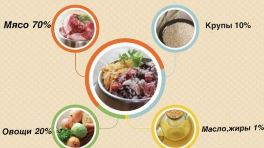 Рекомендуемое соотношение продуктов для натурального питания собак