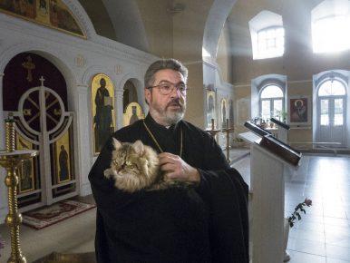 Кот в храме