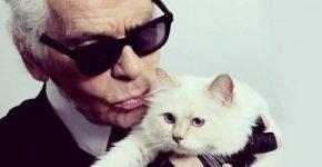 Лагерфельд с кошкой
