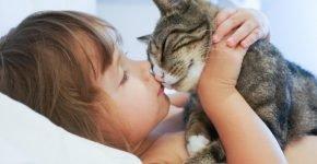 Ребёнок с кошкой