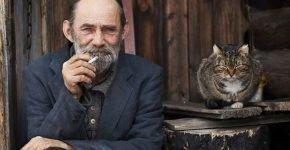 Старик и кошка