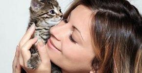 Девушка и котёнок