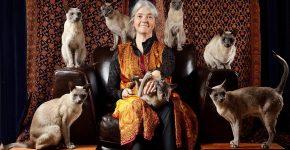 Кошки с заводчицей