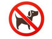 Вход с собакой воспрещён