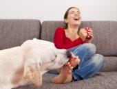 Собака лижет ноги девушке