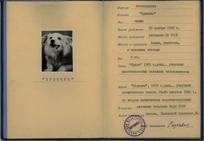 Паспорт Пушинки