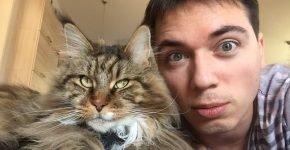 Родион Газманов и его кот