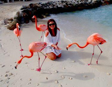 Девушка и фламинго