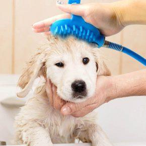 Ручной душ для собаки