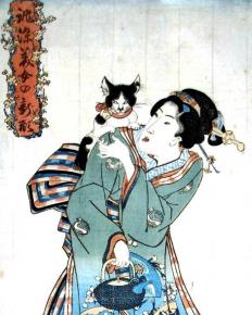 Кошка с японкой