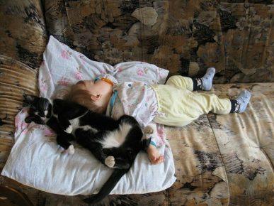 Ребёнок и кошка отдыхают