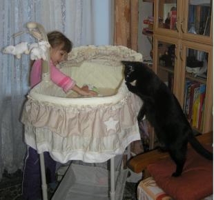 Знакомство кошки с новорождённым