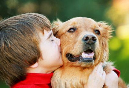 Человек обнимает собаку