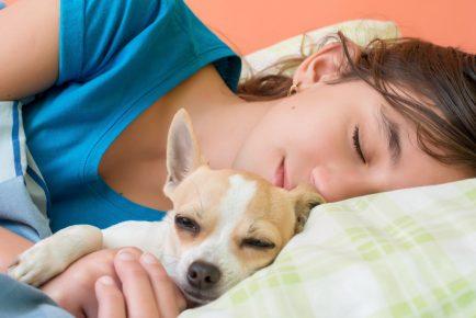 Собака спит с хозяйкой