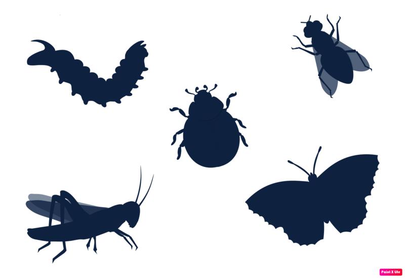 Картинки силуэты насекомых для детей