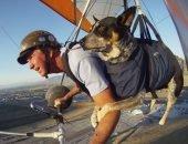 На дельтаплане с собакой