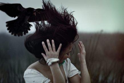 Ворона нападает на человека