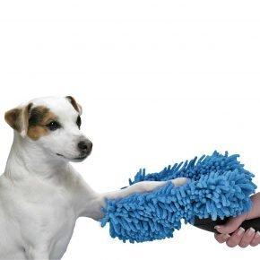 Собака чистит лапки с помощью щётки
