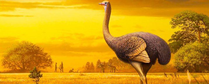 Древний страус