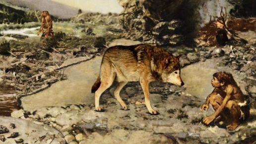 Волк и древний человек