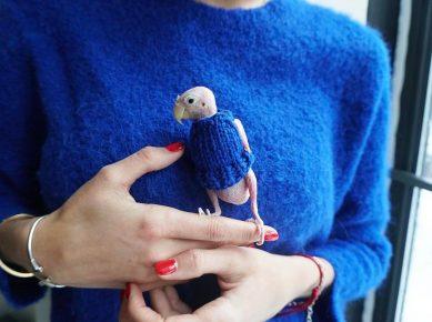 Рея в синем свитере