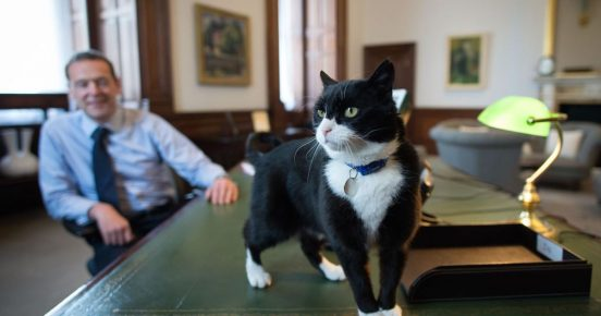 Палмерстон в кабинете Саймона Макдональда