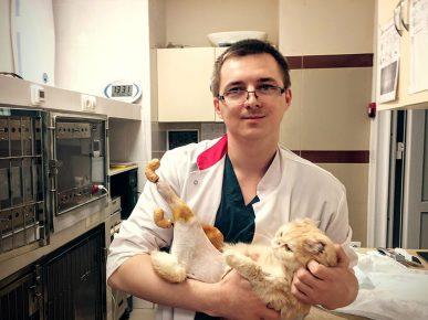 Ветеринар с Рыжиком