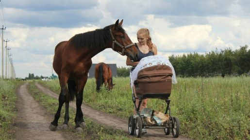 Женщина с коляской и лошадь