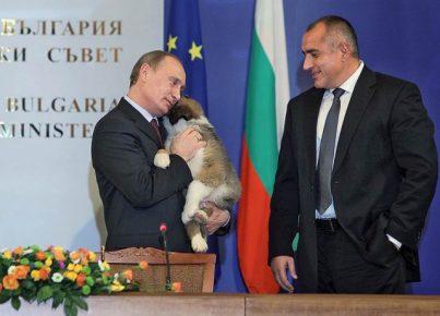 Премьер-министр Болгарии и Путин со щенком