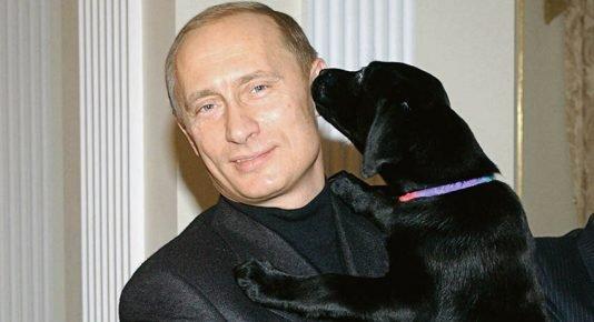 Путин и Конни