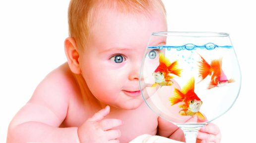 Малыш наблюдает за рыбками