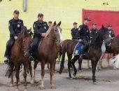 Казачья конная полиция