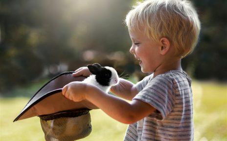 Кролик в шляпе у малыша