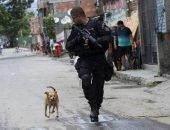 Полицейский пёс