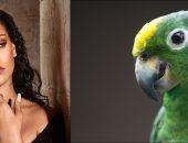 Рианна и зелёный попугай