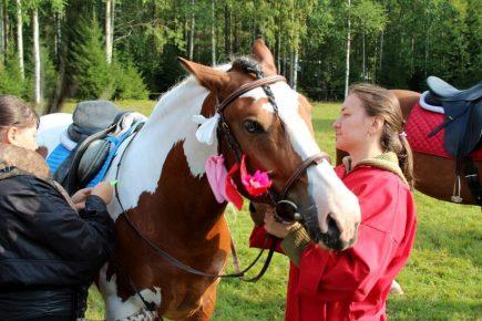 Момент праздника лошади