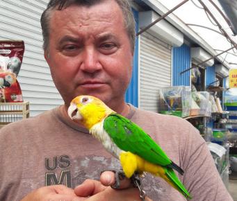 Попугайчик с хозяином