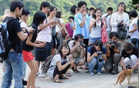 Туристы с фотоаппаратами