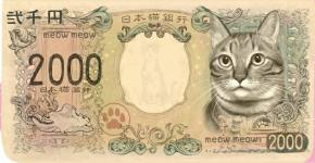 Купюра с котом