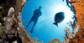 таинственный океан
