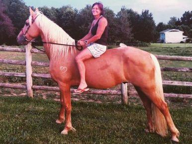 Конь и всадница
