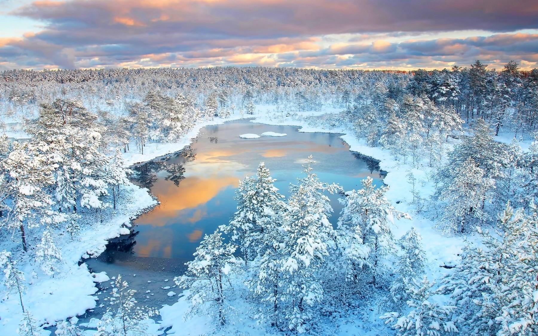 фото красивых зимних уголков полевых