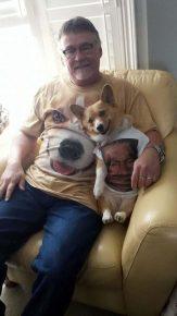корги в футболке с человеком