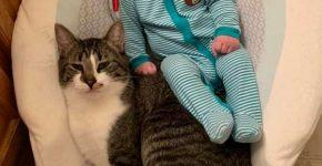 Малыш и Флинн